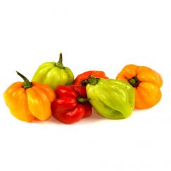 Scotch Bonnet Peppers 1kg